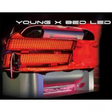Young X BED LED